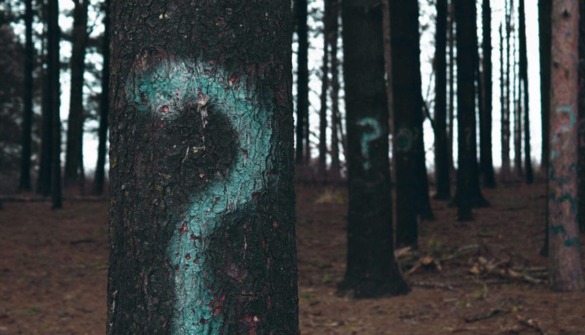 Hvad er clairvoyance (1)